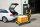 Plattformwagen, 950 x 554 mm, 400 kg Tragfähigkeit, Gelb, luftbereift